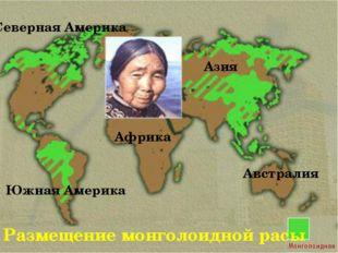 Размещение монголоидной расы Северная Америка Южная Америка Азия Африка Австр