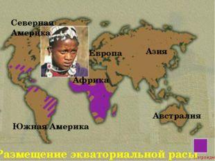 Размещение экваториальной расы Северная Америка Южная Америка Азия Европа Афр