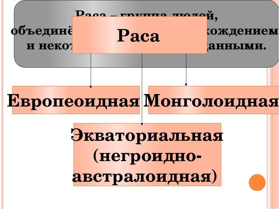 Европеоидная Экваториальная (негроидно- австралоидная) Монголоидная Раса – гр...