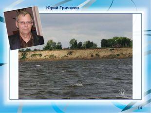 * Юрий Гричкеев