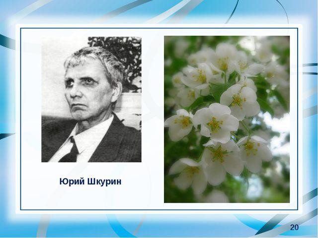 * Юрий Шкурин