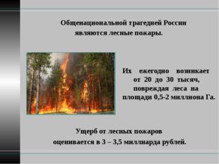 Общенациональной трагедией России являются лесные пожары. Ущерб от лесных по