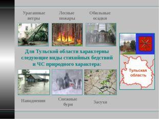 Тульская область Для Тульской области характерны следующие виды стихийных бед