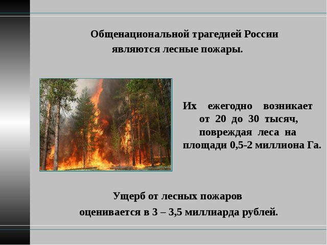Общенациональной трагедией России являются лесные пожары. Ущерб от лесных по...
