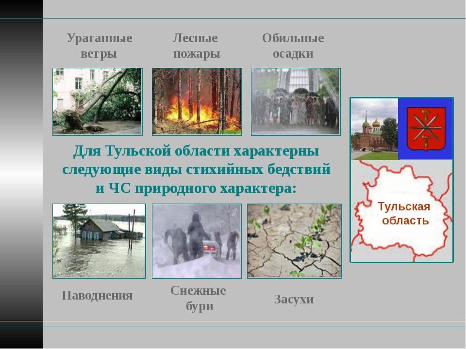 Тульская область Для Тульской области характерны следующие виды стихийных бед...