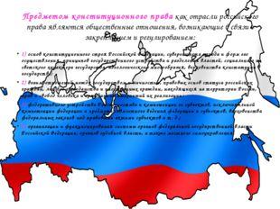 Предметом конституционного правакак отрасли российского права являются общес