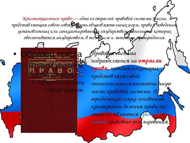 Конституционное право—одна из отраслей правовой системы России, представляю...
