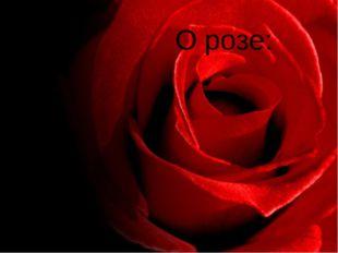 О розе: