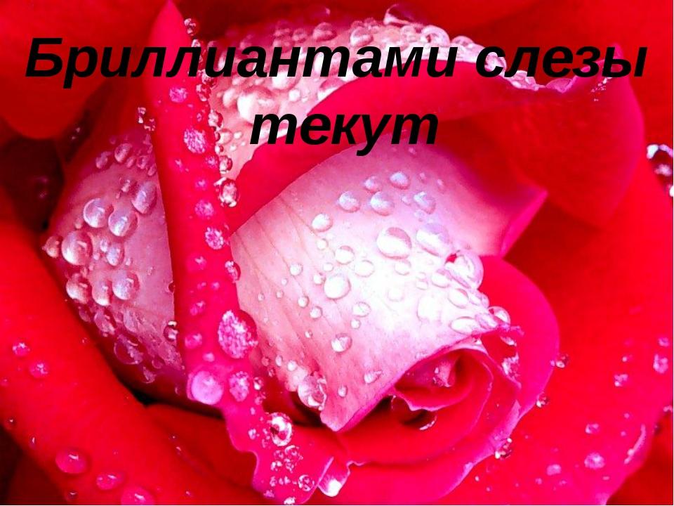 Бриллиантами слезы текут