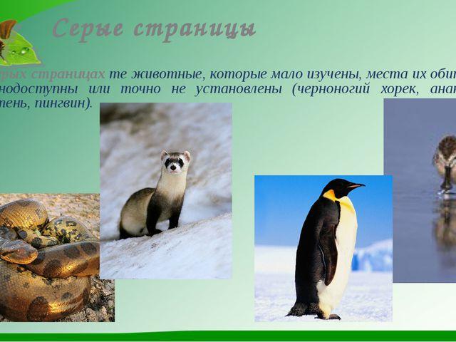 Серые страницы На серых страницах те животные, которые мало изучены, места их...