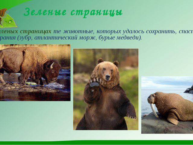 Зеленые страницы На зеленых страницах те животные, которых удалось сохранить,...