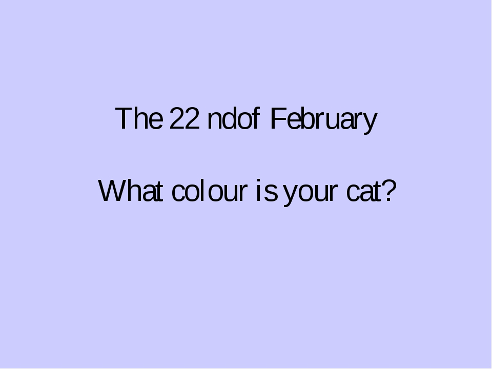 The 22 ndof February What colour is your cat?