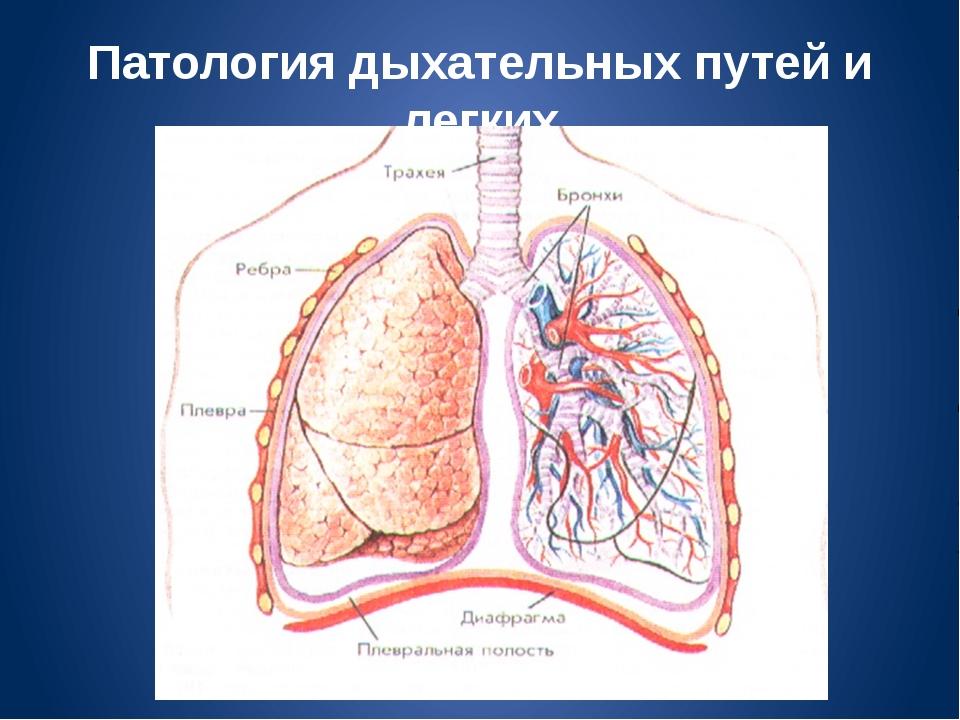 Патология дыхательных путей и легких