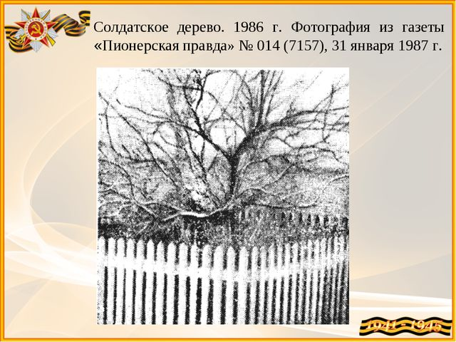 Солдатское дерево. 1986 г. Фотография из газеты «Пионерская правда» № 014 (71...
