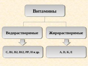 Витамины Водорастворимые Жирорастворимые С, В1, В2, В12, РР, Н и др. A, D, K, E