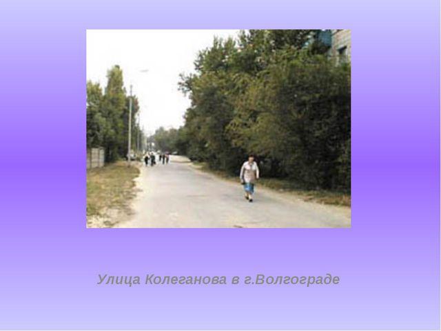 Улица Колеганова в г.Волгограде