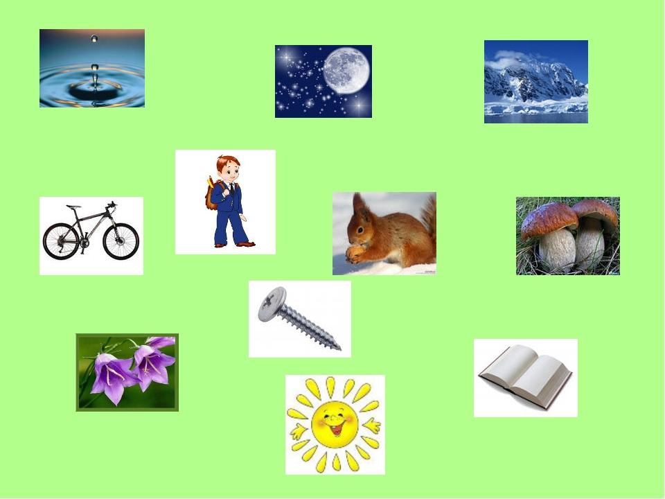 Картинки для детей рукотворного мира