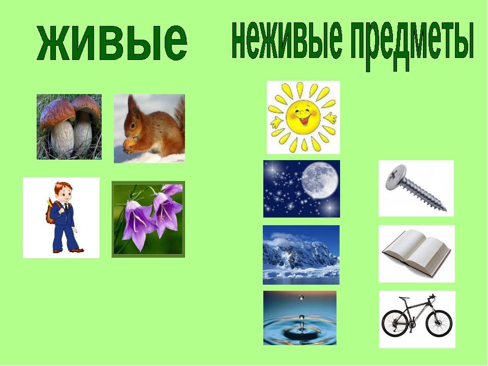картинки живого и неживого предмета одной картинке персонажи