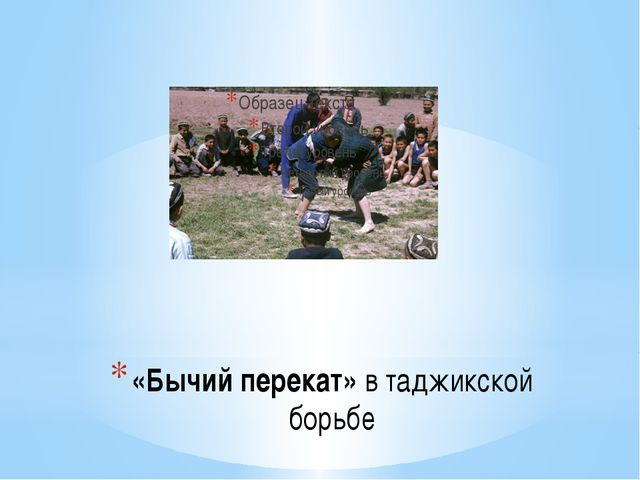 «Бычий перекат» в таджикской борьбе