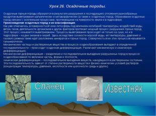 Урок 26. Осадочные породы. Осадочные горные породы образуются в результате ра