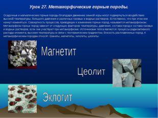 Урок 27. Метаморфические горные породы. Осадочные и магматические горные поро