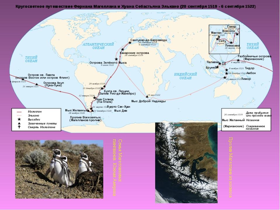 Семья Магеллановых пингвинов. Южная Америка Пролив Магеллана из космоса