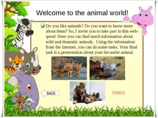 Welcome to the animal world! Do you like animals? Do you want to know more ab