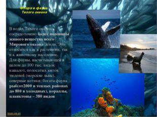Флора и фауна Тихого океана В водах Тихого океана сосредоточено более половин