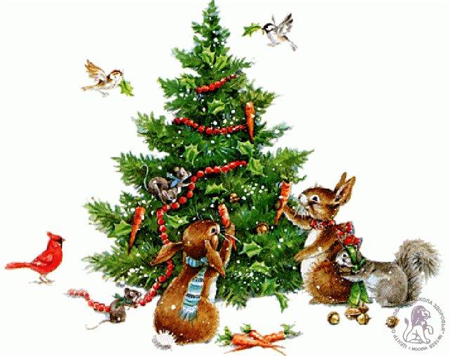 Фото зима, новий рік, приколи, пейзажі, позитив, звірі, свята, тваринки, різдво, вітання, листівки, анімаційні картинки, кумедні
