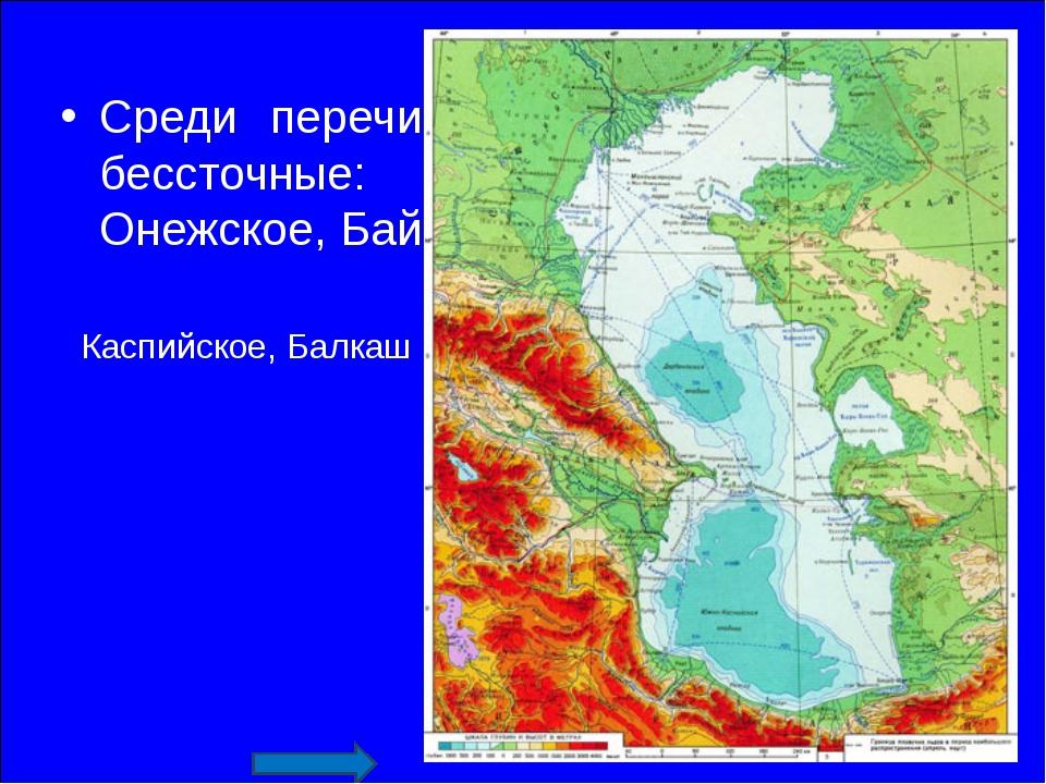 Среди перечисленных озер выберите бессточные: Каспийское, Балкаш, Онежское, Б...