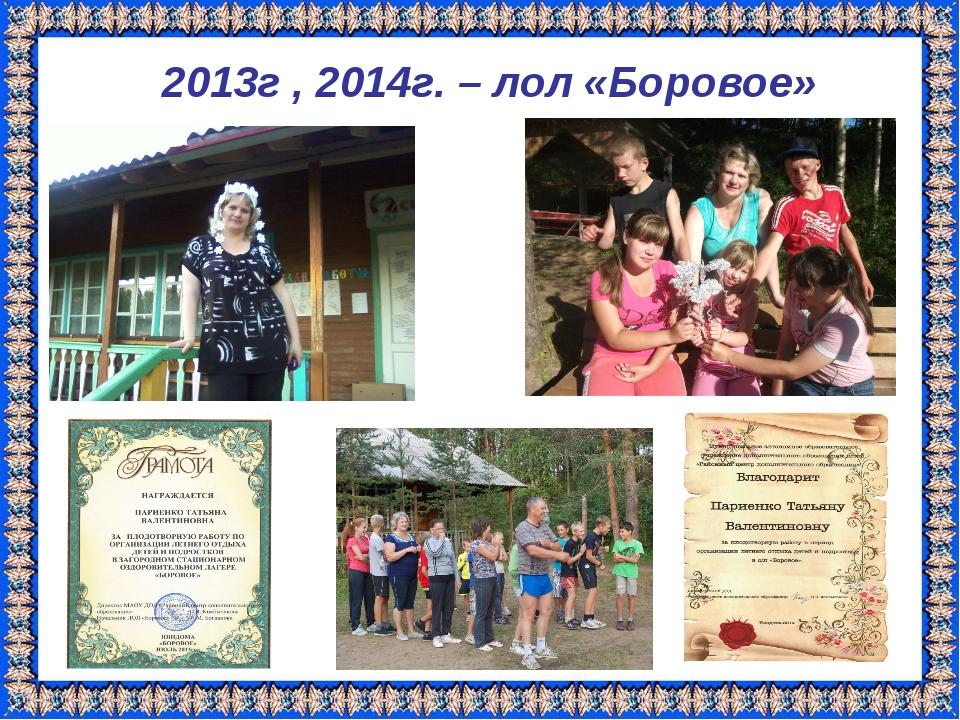 2013г , 2014г. – лол «Боровое»
