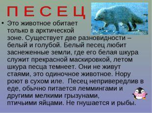 Это животное обитает только в арктической зоне. Существует две разновидности