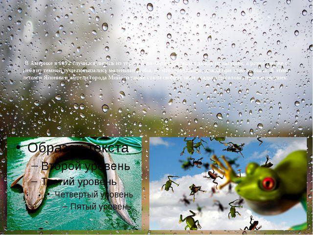 В Америке в 1892 случился ливень из угрей. А во Франции выпал дождь излягуш...
