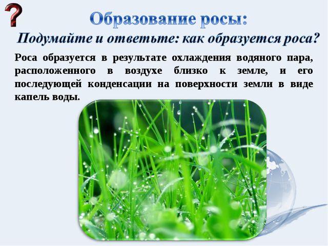 Роса образуется в результате охлаждения водяного пара, расположенного в возду...