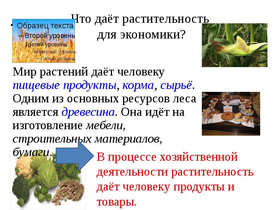 Что даёт растительность для экономики? Мир растений даёт человеку пищевые про...
