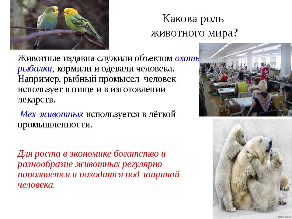 Какова роль животного мира? Животные издавна служили объектом охоты, рыбалки,...