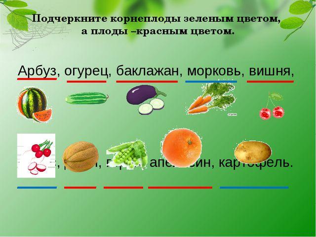 Подчеркните корнеплоды зеленым цветом, а плоды –красным цветом. Арбуз, огурец...
