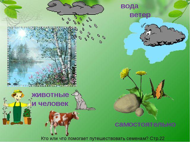 вода ветер животные и человек самостоятельно Кто или что помогает путешествов...