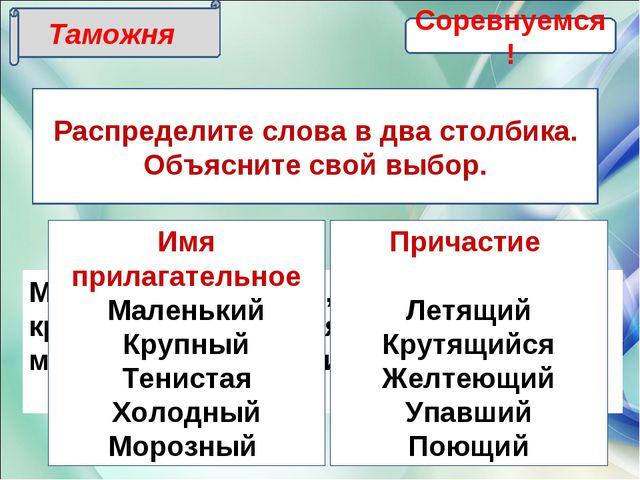Таможня Распределите слова в два столбика. Объясните свой выбор. Маленький, л...