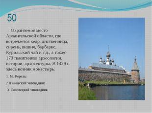 50 Охраняемое место Архангельской области, где встречается кедр, лиственница,