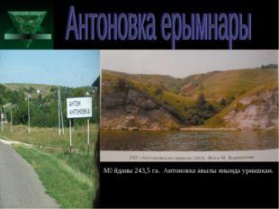 Мәйданы 243,5 га. Антоновка авылы янында урнашкан.
