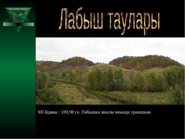 Мәйданы : 189,98 га. Лабышка авылы янында урнашкан.