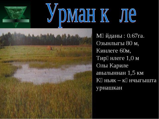 Мәйданы : 0.67га. Озынлыгы 80 м, Кинлеге 60м, Тирәнлеге 1,0 м Олы Кариле авыл...