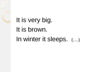 It is very big. It is brown. In winter it sleeps. (….)