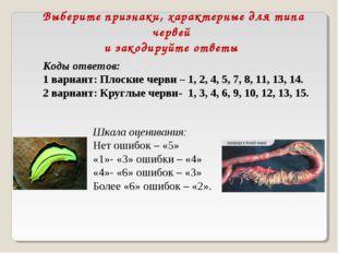 Выберите признаки, характерные для типа червей и закодируйте ответы Коды отве