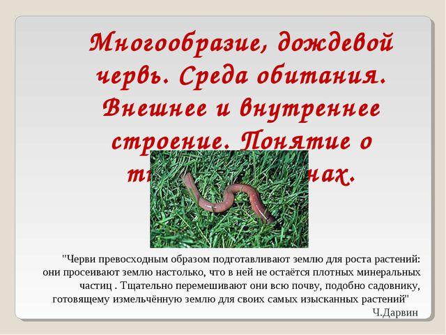 Многообразие, дождевой червь. Среда обитания. Внешнее и внутреннее строение....