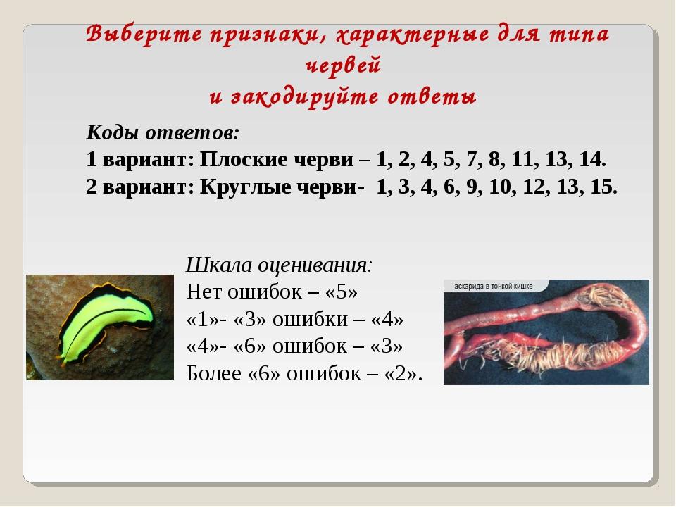 Выберите признаки, характерные для типа червей и закодируйте ответы Коды отве...
