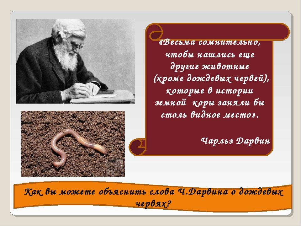 «Весьма сомнительно, чтобы нашлись еще другие животные (кроме дождевых червей...