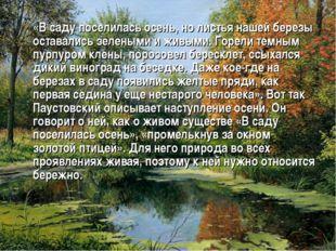 «В саду поселилась осень, но листья нашей березы оставались зелеными и живым