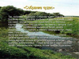 Так, например, в рассказе «Собрание чудес» описана дорога к Боровому озеру.